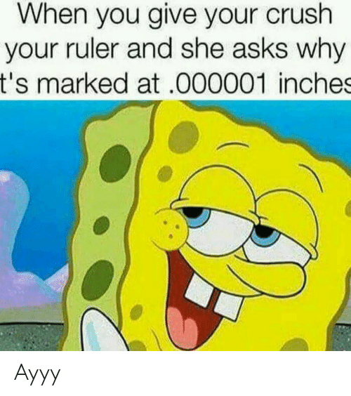 Crush, Ruler, and Asks: When you give your crush  your ruler and she asks why  t's marked at.000001 inches Ayyy