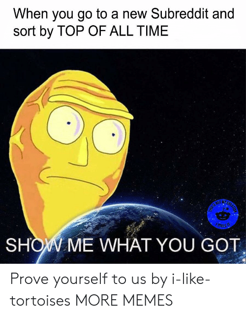 Dank, Memes, and Target: When you go to a new Subreddit and  sort by TOP OF ALL TIME  SUL  の02En  SHOV ME WHAT YOU GOT Prove yourself to us by i-like-tortoises MORE MEMES