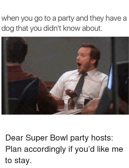 Memes, Party, and Super Bowl: when you go to a party and they havea  dog that you didn't know about. Dear Super Bowl party hosts: Plan accordingly if you'd like me to stay.