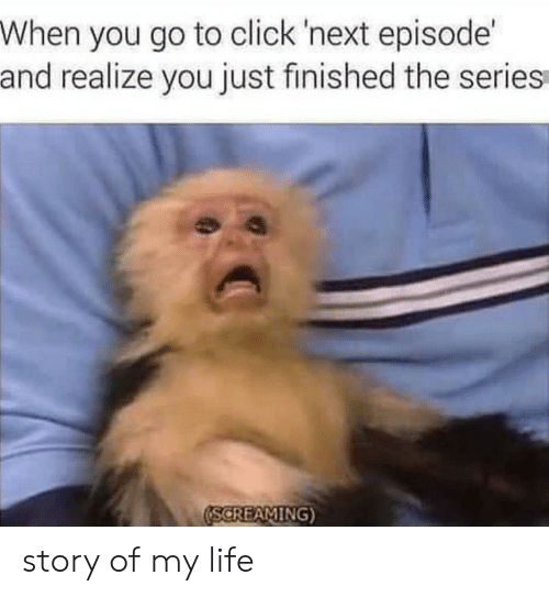 next episode: When you go to click 'next episode  and realize you just finished the series  SCREAMING story of my life