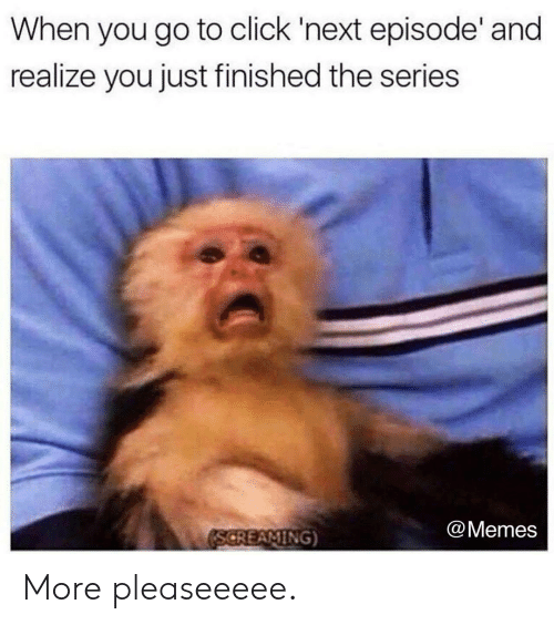 next episode: When you go to click 'next episode' and  realize you just finished the series  @Memes More pleaseeeee.
