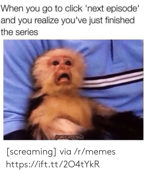 Aming: When you go to click 'next episode'  and you realize you've just finished  the series  AMING [screaming] via /r/memes https://ift.tt/2O4tYkR