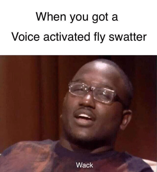 Wack: When you got a  Voice activated fly swatter  Wack