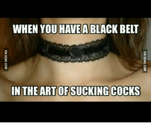 Black, Black Belt, and You: WHEN YOU HAVE A BLACK BELT  IN THE ARTOFSUCKING COCKS