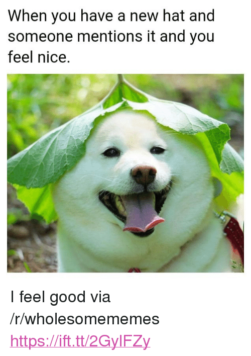 """Good, Nice, and Via: When you have a new hat and  someone mentions it and you  feel nice. <p>I feel good via /r/wholesomememes <a href=""""https://ift.tt/2GylFZy"""">https://ift.tt/2GylFZy</a></p>"""