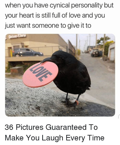 Love, Cynical, and Heart: when you have cynical personality but  your heart is still full of love and you  just want someone to give it to 36 Pictures Guaranteed To Make You Laugh Every Time