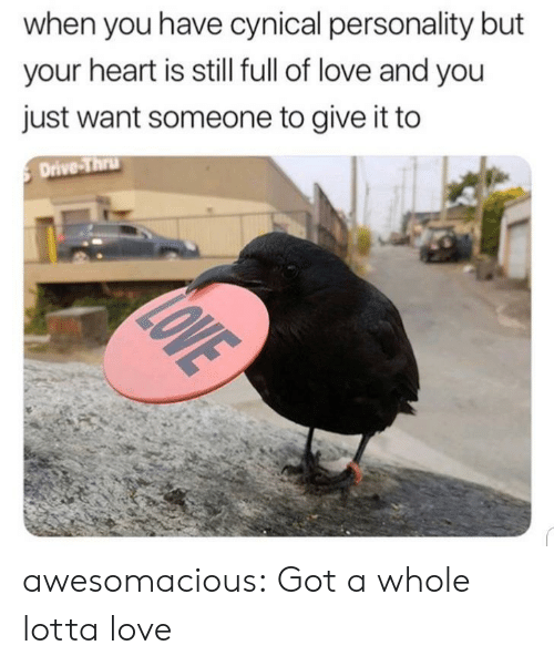 Thru: when you have cynical personality but  your heart is still full of love and you  just want someone to give it to  Drive-Thru  LOVE awesomacious:  Got a whole lotta love