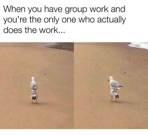 Work, Only One, and Who: When you have group work and  you're the only one who actually  does the work...