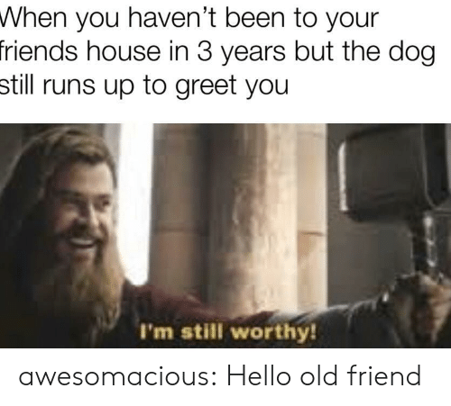 Friends, Hello, and Tumblr: When you haven't been to your  friends house in 3 years but the dog  still runs up to greet you  I'm still worthy! awesomacious:  Hello old friend
