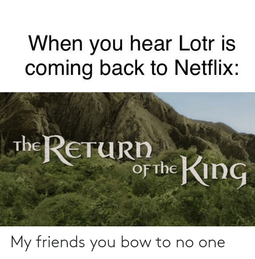 my friends you bow to no one: When you hear Lotr is  coming back to Netflix:  The RETURD  of the KinG  O My friends you bow to no one