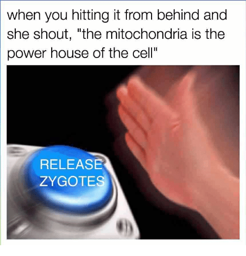 """When You Hitting It From Behind: when you hitting it from behind and  she shout, """"the mitochondria is the  power house of the cell""""  RELEASE  ZYGOTES"""