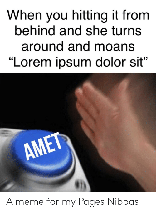 """When You Hitting It From Behind: When you hitting it from  behind and she turns  around and moans  """"Lorem ipsum dolor sit""""  AME A meme for my Pages Nibbas"""