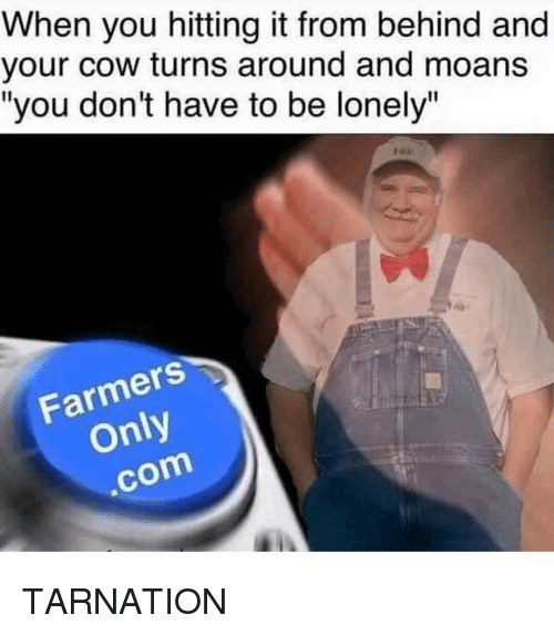 "Memes, 🤖, and Cow: When you hitting it from behind and  your cow turns around and moans  ""you don't have to be lonely""  Farmers  com TARNATION"