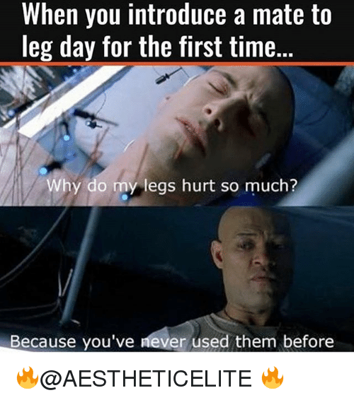 Legs Day: When you introduce a mate to  leg day for the first time.  Why do my legs hurt so much?  Because you've never used them before 🔥@AESTHETICELITE 🔥