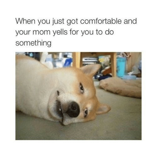 Comfortable, Mom, and Got: When you just got comfortable and  your mom yells for you to do  something