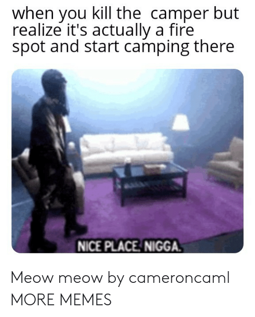 Dank, Fire, and Memes: when you kill the camper but  realize it's actually a fire  spot and start camping there  NICE PLACE NIGGA. Meow meow by cameroncaml MORE MEMES