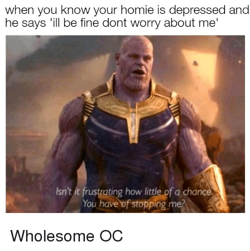 Homie, Wholesome, and How: when you know your homie is depressed and  he says 'ill be fine dont worry about me  Isn't it frustrating how little of a chance  You have of stopping me Wholesome OC