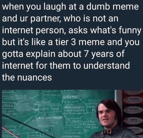 Liked A: when you laugh at a dumb meme  and ur partner, who is not an  internet person, asks what's funny  but it's like a tier 3 meme and you  gotta explain about 7 years of  internet for them to understand  the nuances