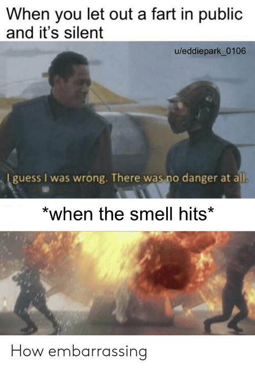Smell, Guess, and How: When you let out a fart in public  and it's silent  u/eddiepark_0106  I guess I was wrong. There was no danger at all.  *when the smell hits* How embarrassing