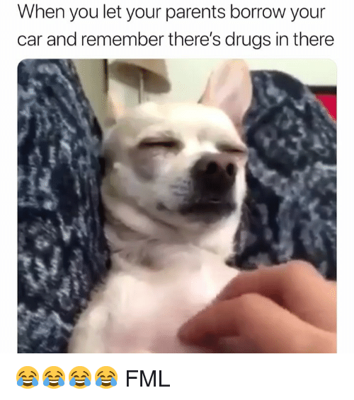 Drugs, Fml, and Parents: When you let your parents borrow your  car and remember there's drugs in there 😂😂😂😂 FML