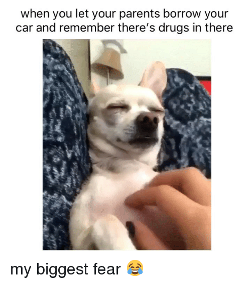 Drugs, Parents, and Weed: when you let your parents borrow your  car and remember there's drugs in there my biggest fear 😂