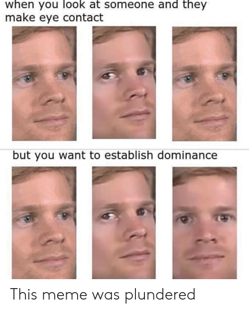 Meme, Eye, and Make: when you look at someone and they  make eye contact  but you want to establish dominance This meme was plundered