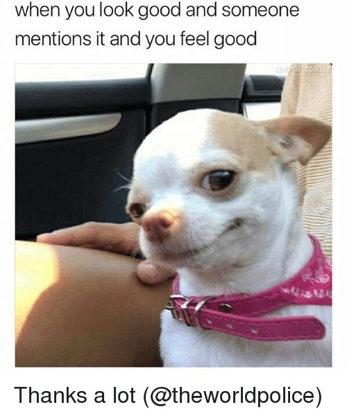 Memes, Good, and Thanks a Lot: when you look good and someone  mentions it and you feel good Thanks a lot (@theworldpolice)