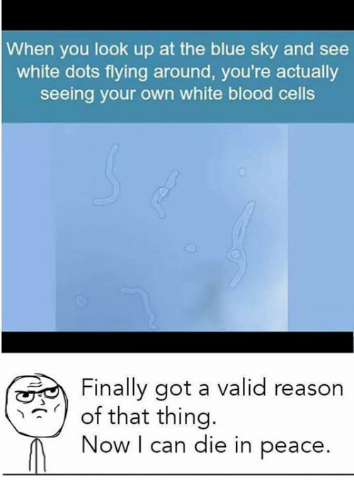 dieing: When you look up at the blue sky and see  white dots flying around, you're actually  seeing your own white blood cells  Finally got a valid reason  of that thing.  Now I can die in peace.