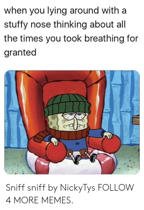 sniff sniff: when you lying around with a  stuffy nose thinking about all  the times you took breathing for  granted Sniff sniff by NickyTys FOLLOW 4 MORE MEMES.
