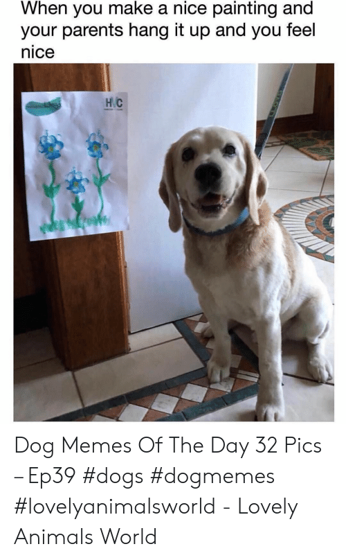 Animals, Dogs, and Memes: When you make a nice painting and  your parents hang it up and you feel  nice  НС Dog Memes Of The Day 32 Pics – Ep39 #dogs #dogmemes #lovelyanimalsworld - Lovely Animals World