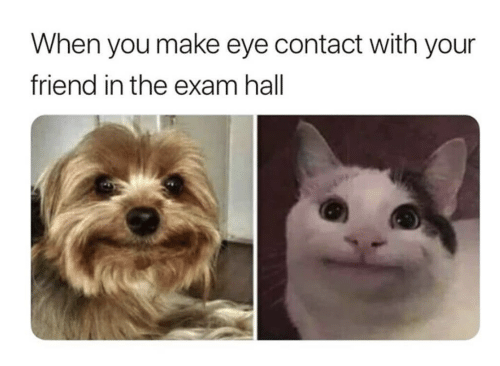 Eye, Friend, and Make: When you make eye contact with your  friend in the exam hall