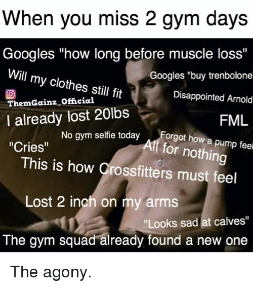 """Clothes, Disappointed, and Fml: When you miss 2 gym days  Googles """"how long before muscle loss""""  Googles """"buy trenbolone  Disappointed Arnold  FML  Will my clothes still fit  回  ThemGainz Official  I already lost 20lbs  No gym selfie todayForgot how a p  Alf for nothing  """"Cries""""  This is how Crossfitters must feel  Lost 2 inch on my arms  Looks sad at calves""""  The gym squad already found a new one The agony."""