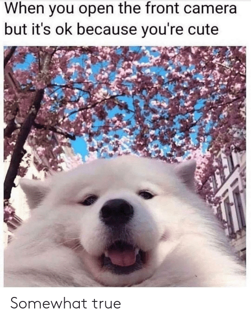 Front Camera: When you open the front camera  but it's ok because you're cute Somewhat true