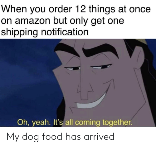 Amazon, Food, and Funny: When you order 12 things at once  on amazon but only get one  shipping notification  Oh, yeah.  all coming together. My dog food has arrived