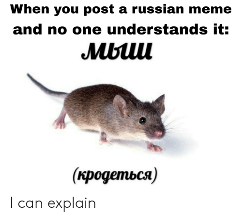 Russian Meme: When you post a russian meme  and no one understands it:  Mbuu  (кродеться) I can explain