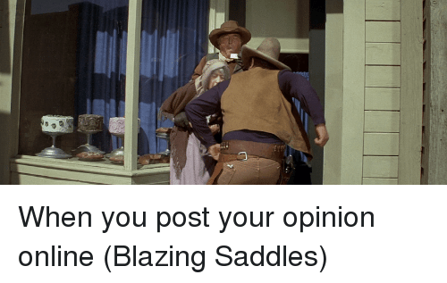 blazing saddles: When you post your opinion online (Blazing Saddles)