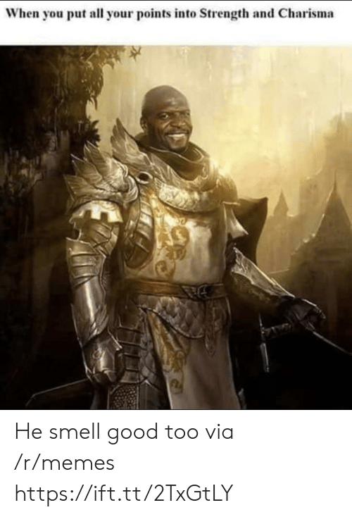 Memes, Smell, and Good: When you put all your points into Strength and Charisma He smell good too via /r/memes https://ift.tt/2TxGtLY