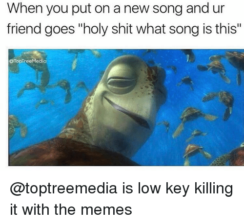 """goe: When you put on a new song and ur  friend goes """"holy shit what song is this""""  OTopTree Media @toptreemedia is low key killing it with the memes"""
