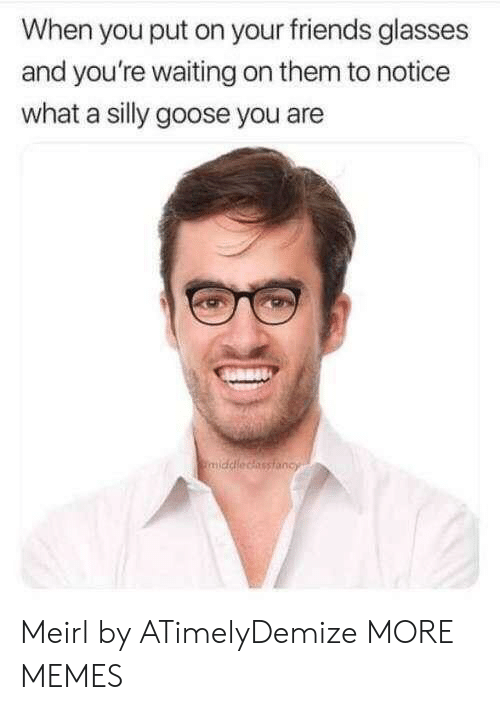 Dank, Friends, and Memes: When you put on your friends glasses  and you're waiting on them to notice  what a silly goose you are Meirl by ATimelyDemize MORE MEMES