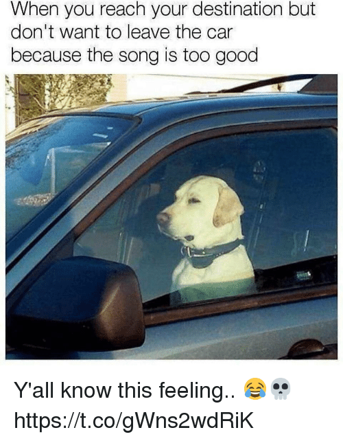 Good, Car, and Song: When you reach your destination but  don't want to leave the car  because the song is too good Y'all know this feeling.. 😂💀 https://t.co/gWns2wdRiK