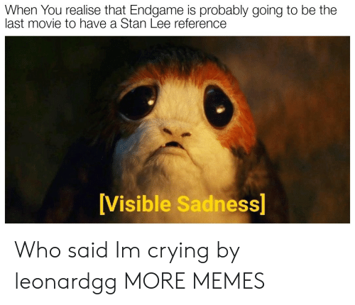 Crying, Dank, and Memes: When You realise that Endgame is probably going to be the  last movie to have a Stan Lee reference  Visible Sadness Who said Im crying by leonardgg MORE MEMES