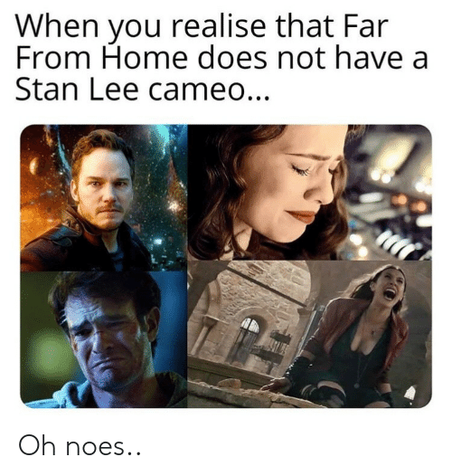 cameo: When you realise that Far  From Home does not have a  Stan Lee cameo... Oh noes..