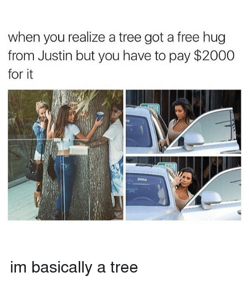free hug: when you realize a tree got a free hug  from Justin but you have to pay $2000  for it im basically a tree