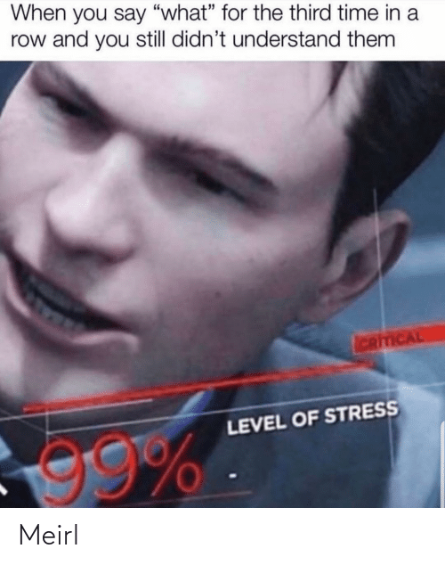 """stress: When you say """"what"""" for the third time in a  row and you still didn't understand them  ICRITICAL  LEVEL OF STRESS  99% Meirl"""