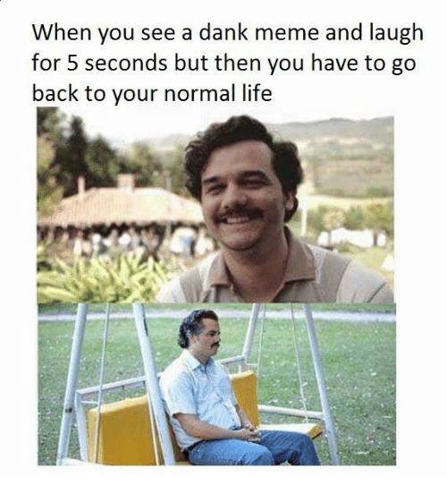 Dank, Life, and Meme: When you see a dank meme and laugh  for 5 seconds but then you have to go  back to your normal life