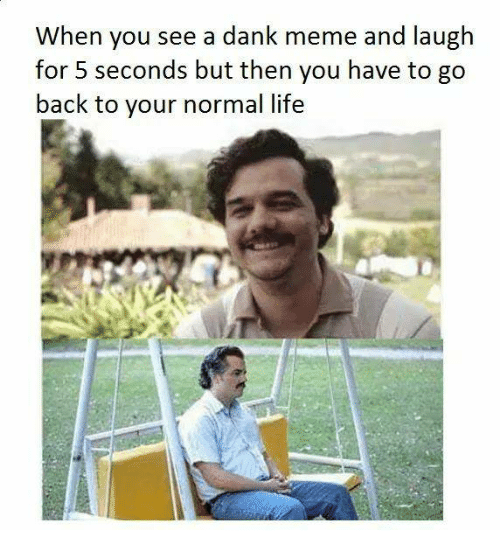 Dank, Life, and Meme: When you see a dank meme and laugh  for seconds but then you have to go  back to your normal life