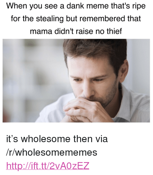 "Dank, Meme, and Http: When you see a dank meme that's ripe  for the stealing but remembered that  mama didn't raise no thief <p>it&rsquo;s wholesome then via /r/wholesomememes <a href=""http://ift.tt/2vA0zEZ"">http://ift.tt/2vA0zEZ</a></p>"