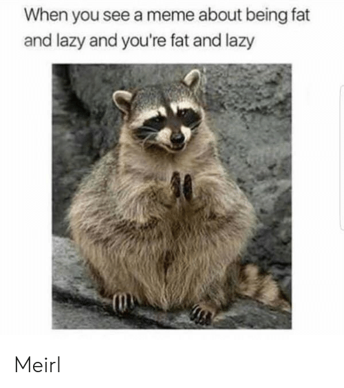 Lazy, Meme, and Fat: When you see a meme about being fat  and lazy and you're fat and lazy Meirl