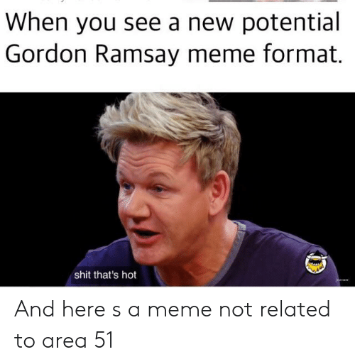 When You See a New Potential Gordon Ramsay Meme Format Shit That's