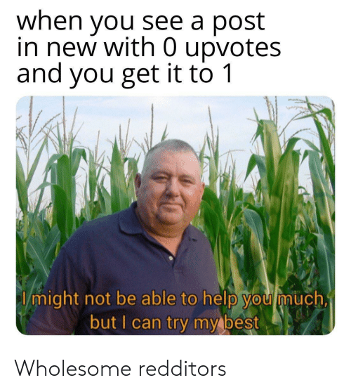 Try My Best: when you see a post  in new with 0 upvotes  and you get it to 1  I might not be able to help you much,  but I can try my best Wholesome redditors